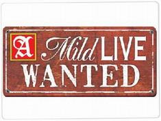 siap-jadi-beken-di-a-mild-live-wanted-2009